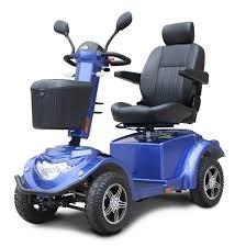 Quadriporteur RZ1000 bleu